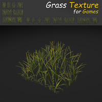 Plains Grass Texture Low Poly