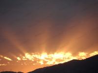 Sun Rays 11