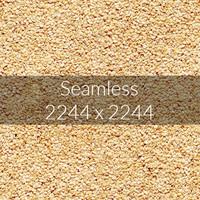 Sesame texture map 05
