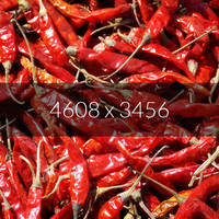 Red Indian Chili Texture Map