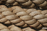 Rope_Texture_0001