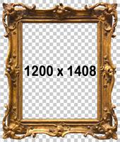 Classical Frame 746