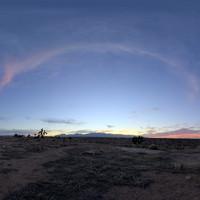 Mojave Desert 55