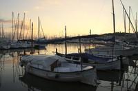Harbour of Palma de Mallorca