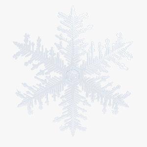 max snowflake 9