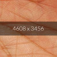 Palm Screen Texture