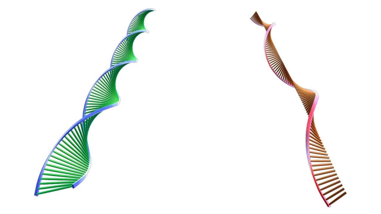 3d model dna molecule rna