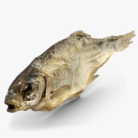 Dry Fish 2