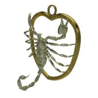 3d zodiac scorpio sign