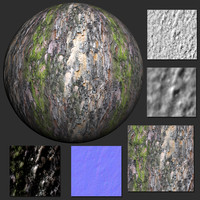 Bark (23) - Texture