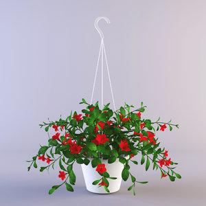 3d petunia model
