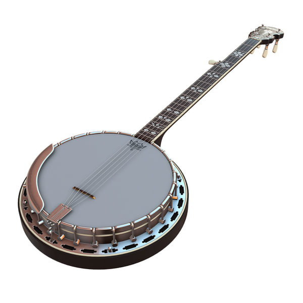 banjo epiphone 3d model
