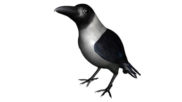 3d house crow model