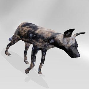 hyena dog 3d model