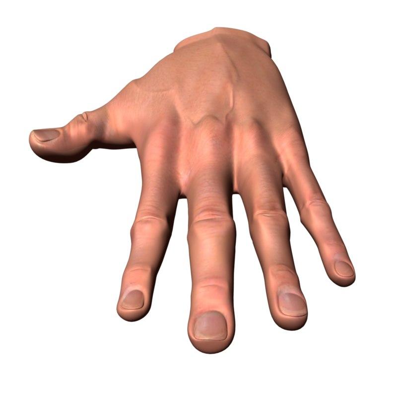 3d model male human hand