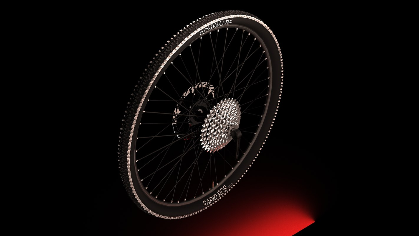 rear bicycle tire bike 3d model