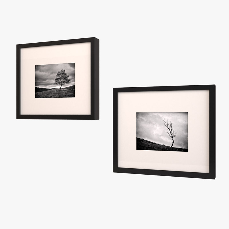 framed art black white 3ds