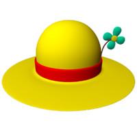 Ladies Flower Hat