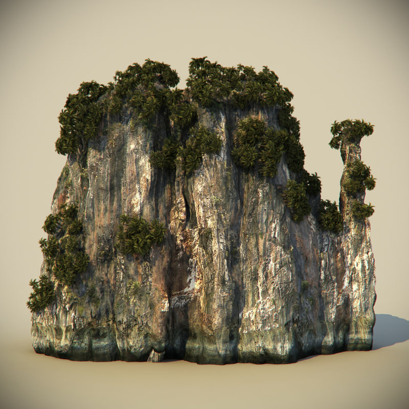 rock plants 3d model