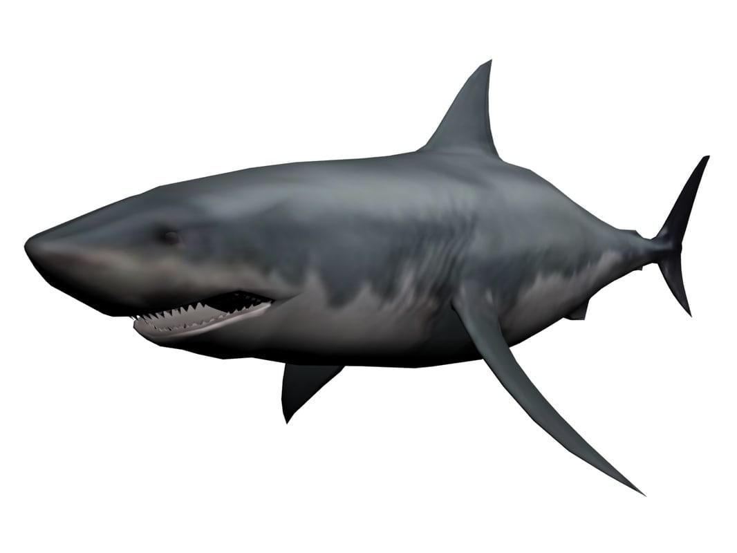 3ds megaldon shark