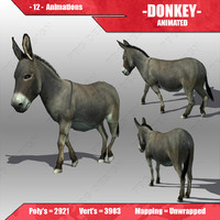 Donkey Animated