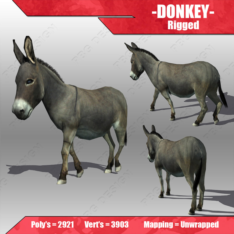 donkey animations 3d model