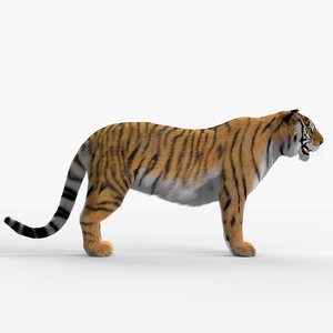 tiger hair fur 3d max