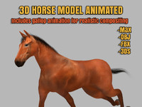 horse animation 3d model