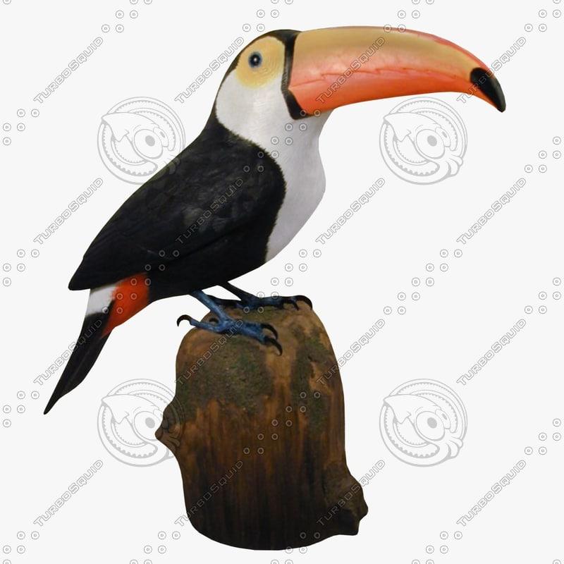 toucan fg 3ds