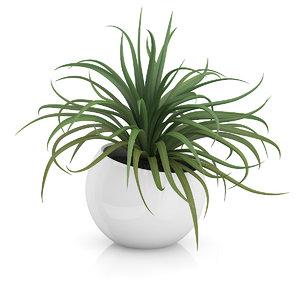 plant sphere pot 3d max