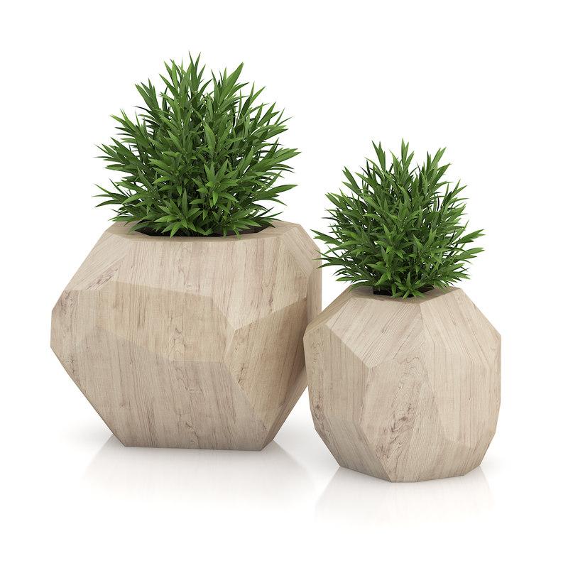 max plants wooden pots