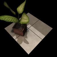 Marble_027 French Vanilla