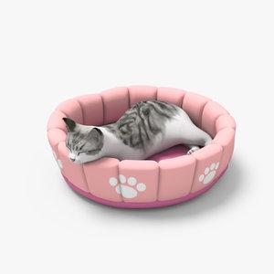 3d cat cushion