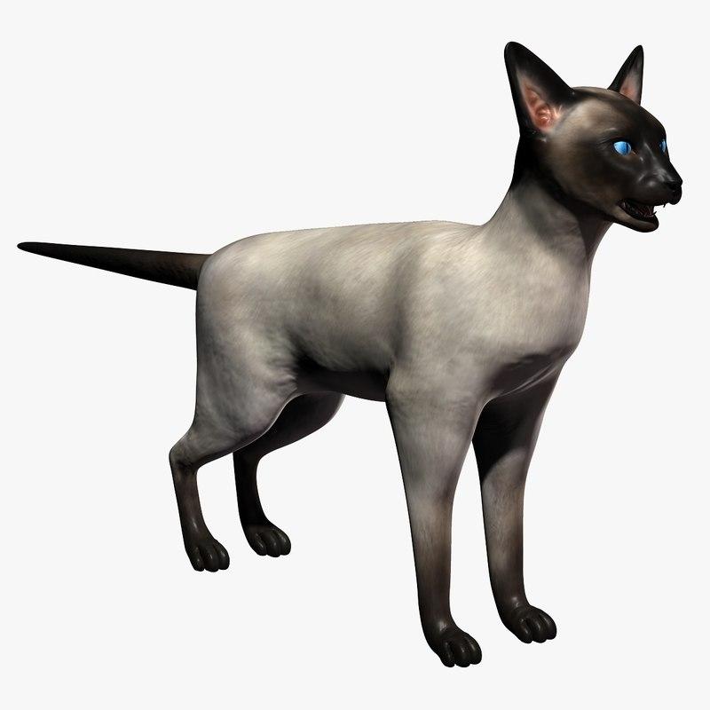 3d model normal cat
