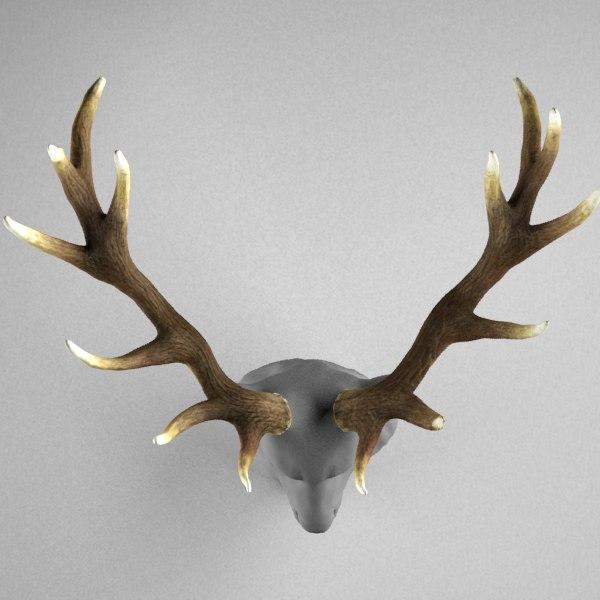 deer antlers head max