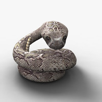 3d western diamondback rattlesnake rigged model