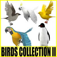 Birds Collection II (5 Animated Models)