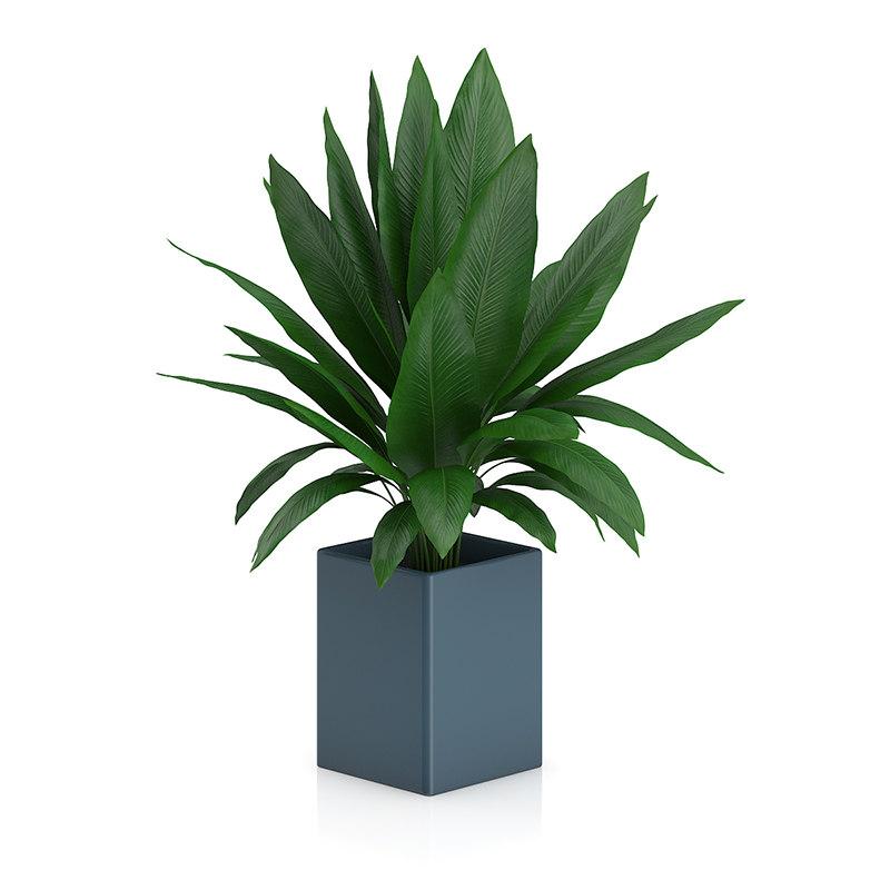 plant square blue pot 3d model