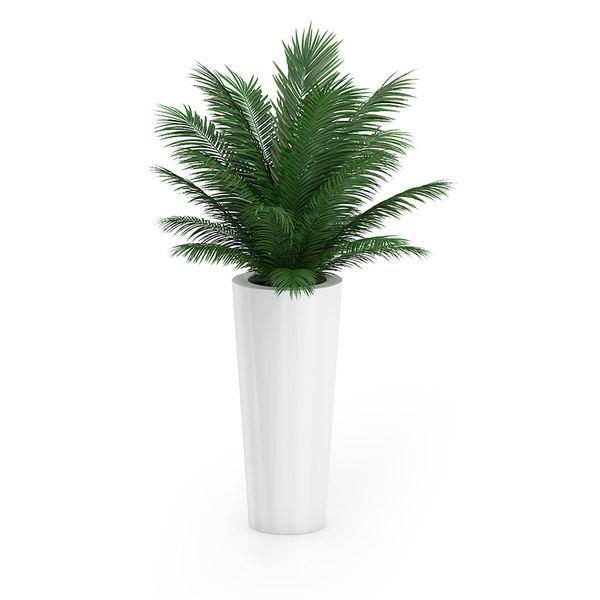 3ds max palm tree pot