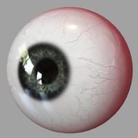 3d model eyes human realistic eyeball