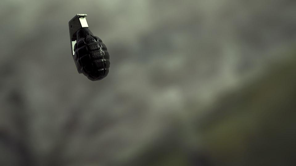 bombe grenade 3d model