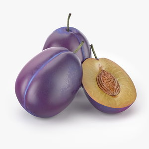 realistic plum fruit real max