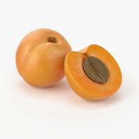 realistic apricot real max
