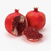 Realistic Pomegranate