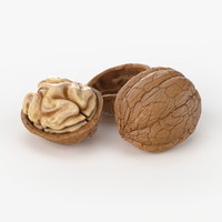 Realistic Walnut