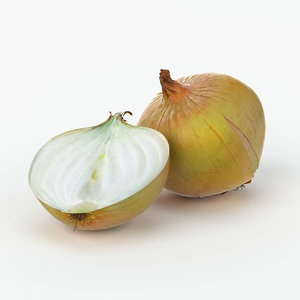 max realistic onion real vegetables