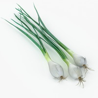 realistic chives real vegetables max
