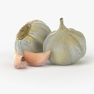 realistic garlic real vegetables 3d model