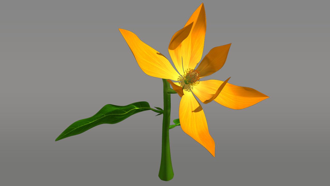obj michelia flowering