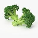 Realistic Broccoli